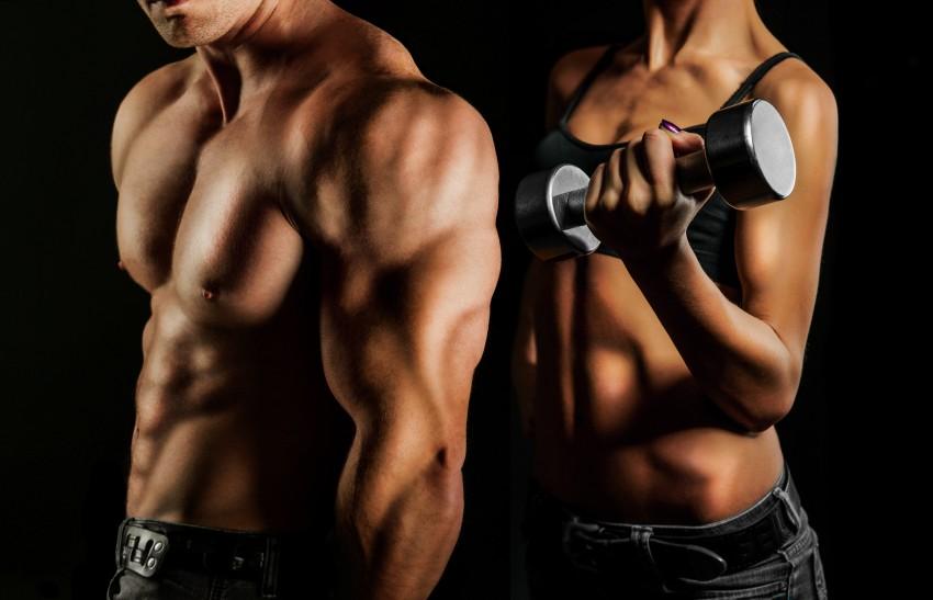 Трибулус террестрис как принимать мужчинам для тренировок
